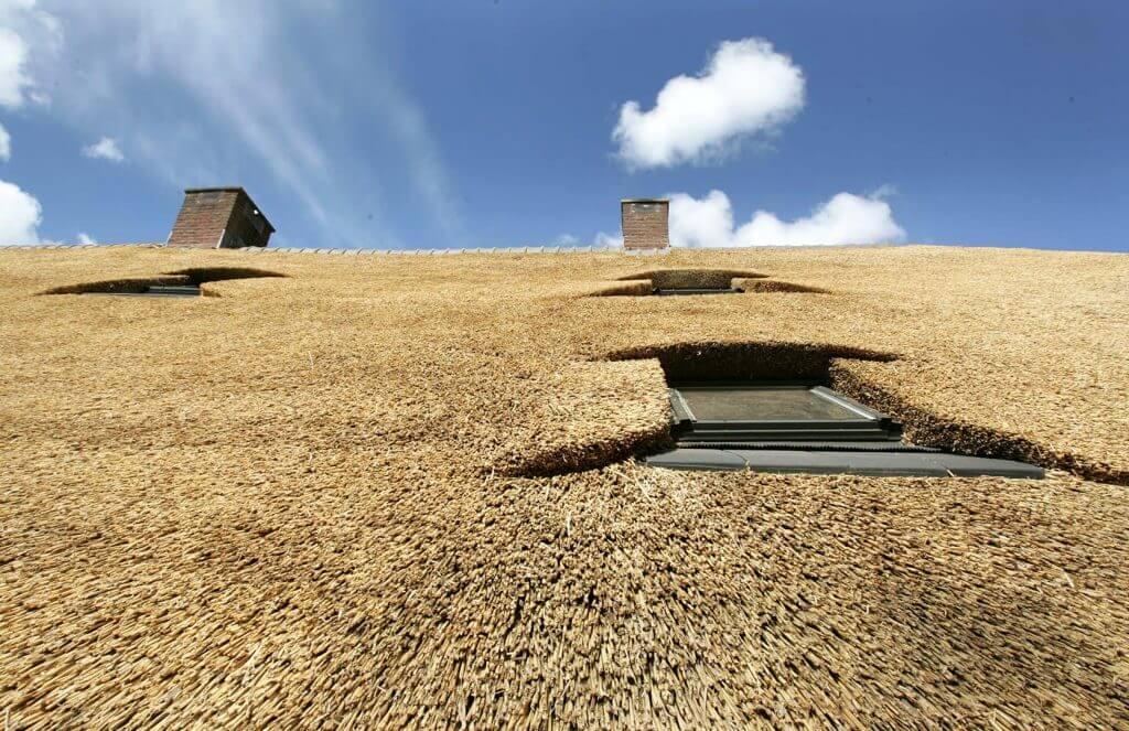 Morren Rietdekkersbedrijf - Rieten dak boerderij Lunteren