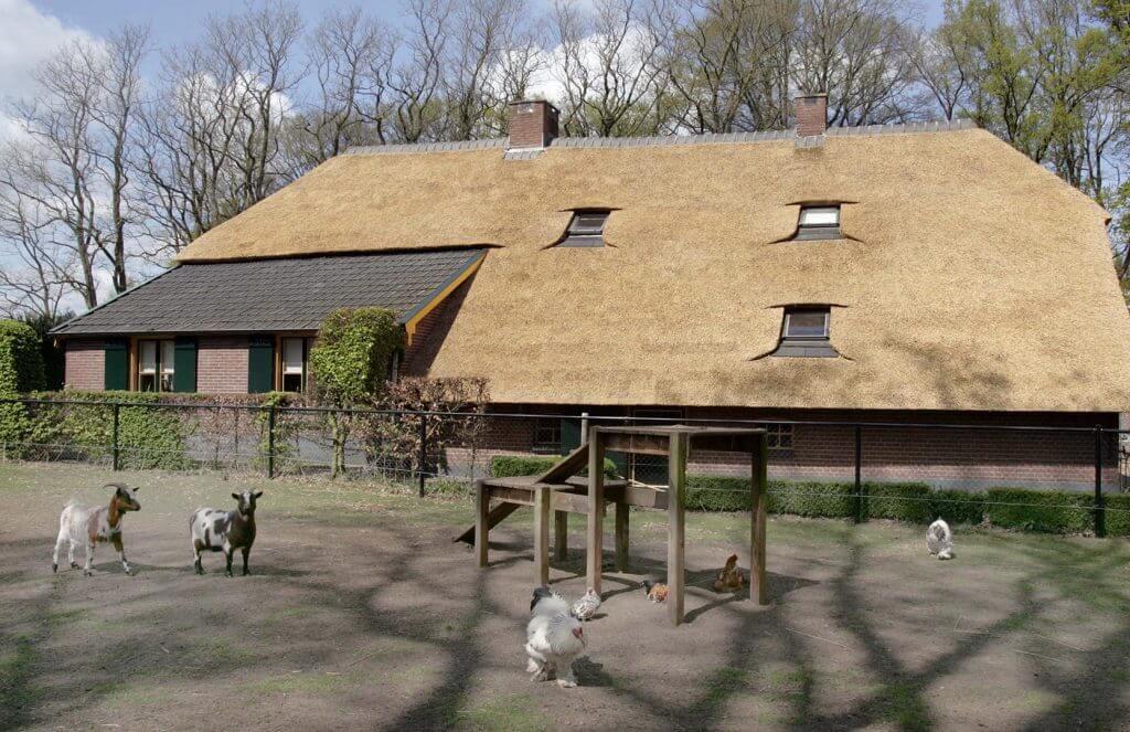 Rieten dak boerderij Lunteren